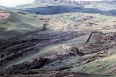 Firstglimpse:Hikingacrossthegulley-riddledlandscape,RonWyattandhissonstoppedariseandsawthe