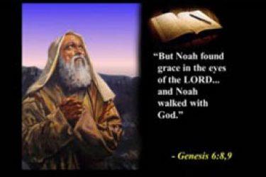Ross Noahs Ark